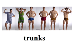 Почему плавки назвали trunks.
